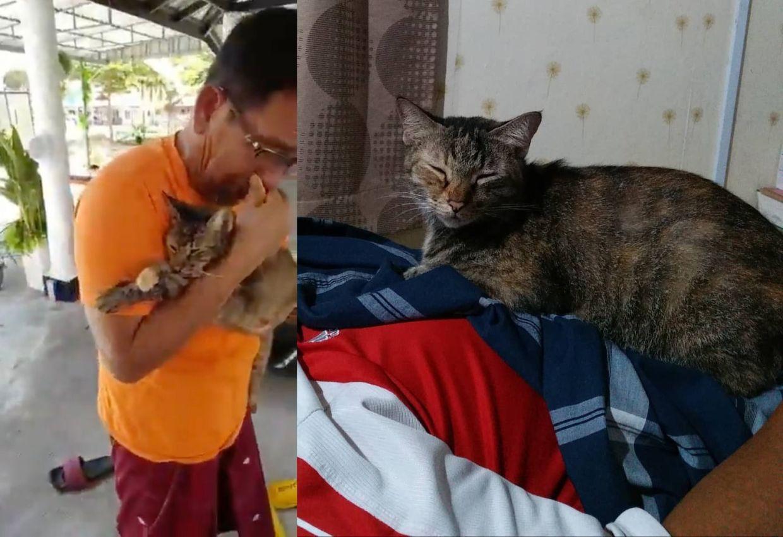 Wanita Terkejut Bapa Menangis Seperti Hilang Anak Selepas Kucingnya Mati Tengok Bekas Makanan Pun Emosi Saya Nikah Pun Abah Tak Nangis Sampai Macam Ni Viral Mstar