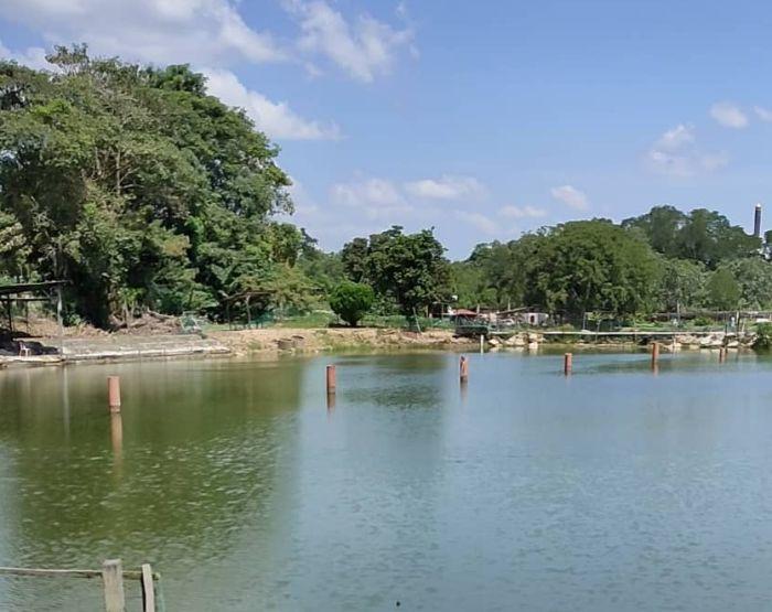 kolam memancing