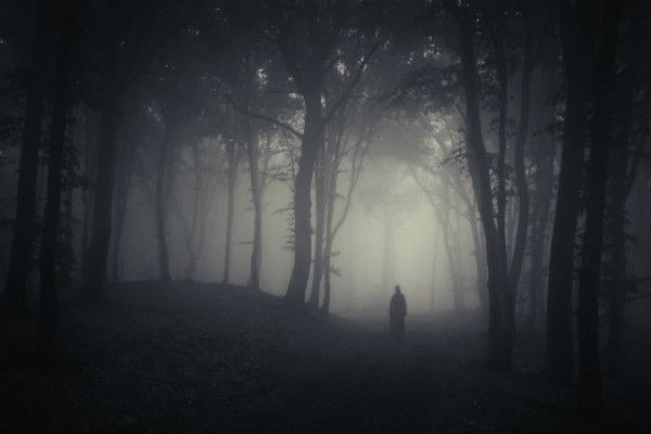 Makhluk Halus dalam hutan.